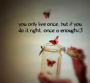 once_is_enough-9074_large